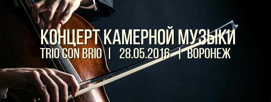 Концерт камерной музыки в Воронеже