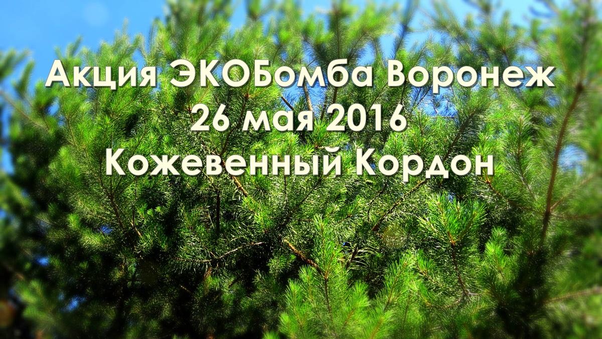 Экобомба-Воронеж 2016